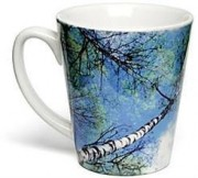 Vista Promotional Photo Mugs